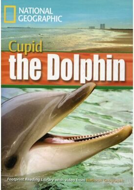 FRL 1600: Cupid The Dolphin [Bk with Multi-ROM(x1)]