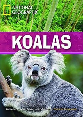 FRL 2600: Koalas [Bk with Multi-ROM(x1)]